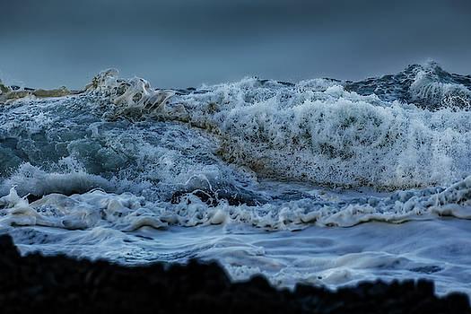 Werner Kaffl - Sea Creatures 1