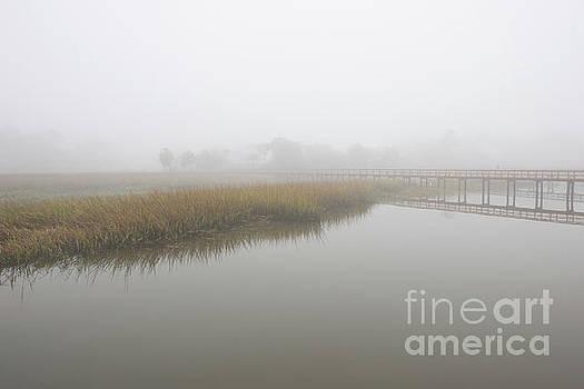 Dale Powell - Sea Mist - Salt Fog