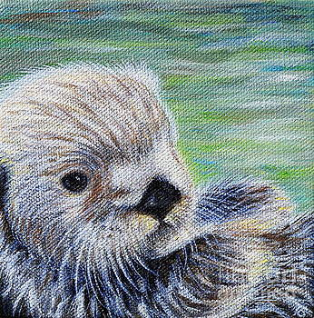 Sea Otter by Kirsten Sneath
