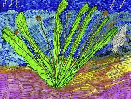 Sea Plant on the Sea Shore by Elinor Helen Rakowski