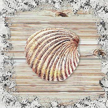 Irina Sztukowski - Sea Shell Beach House Rustic Chic Decor V