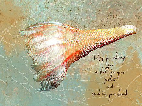 Sea Shell Greeting Card by Linda Cox