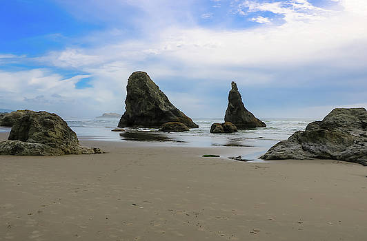 Sea Stack and Spires 2, Bandon Beach, Oregon by Dawn Richards
