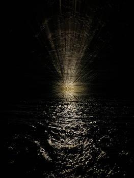Pelo Blanco Photo - Sea Starburst