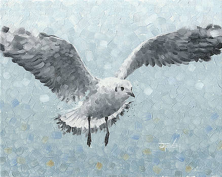 Seagull Against Blue by Steven Thomas Rouse