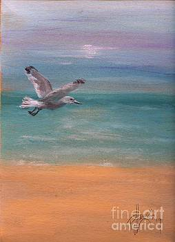 Seagull at Dusk by PJ Lewis
