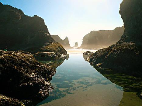 Seascape by Micki Findlay