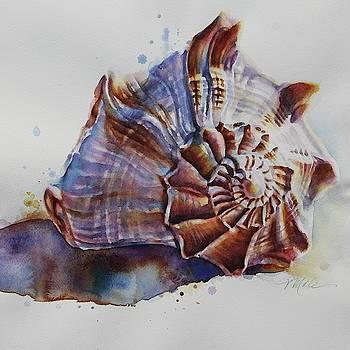 Seashell Swirl by Tracy Male