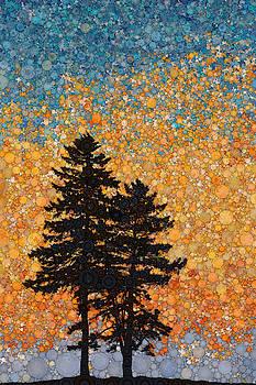 Seaside Pines by Daniel McPheeters