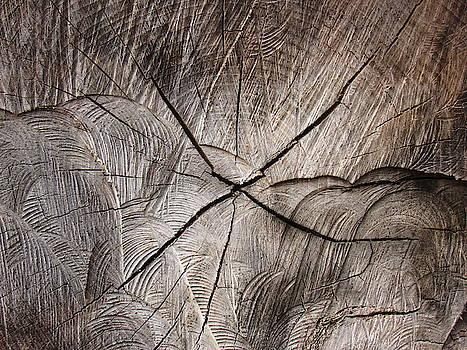 Seasoned Wood by Mandy Byrd