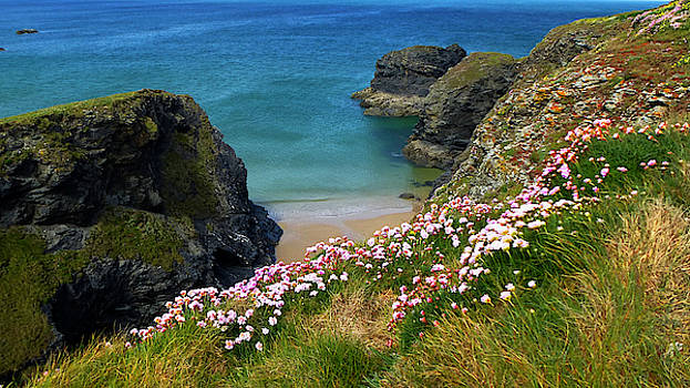 Secluded Cornish Beach by Chris Gill