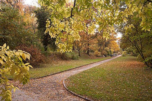 Jenny Rainbow - Secret Garden in Fall Colors 1