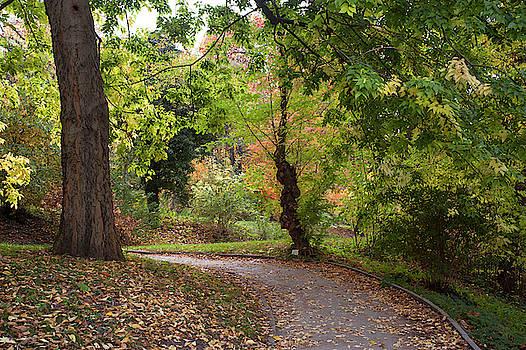 Jenny Rainbow - Secret Garden in Fall Colors