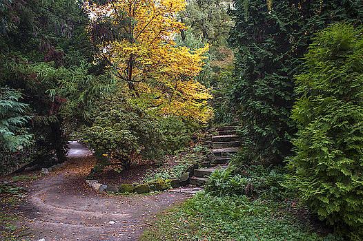 Jenny Rainbow - Secret Garden in Fall Time 5