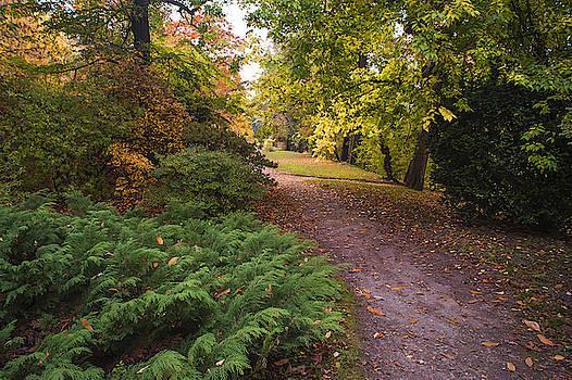 Jenny Rainbow - Secret Garden in Fall Time 9