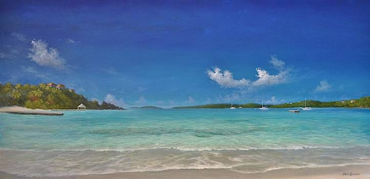 Secret Harbour Blue by Alan Zawacki