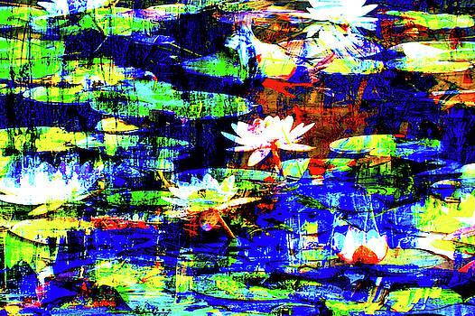 Seerosen by Lee Eggstein