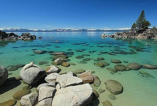 Sekani...Lake Tahoe Water Protector by Sean Sarsfield