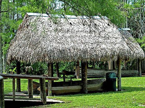 Seminole Structure, Floarida - 2 by Randy Muir