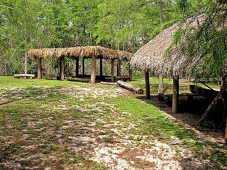 Seminole Structure - Florida - 1 by Randy Muir