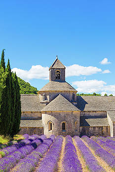 Francesco Riccardo Iacomino - Senanque, Provence, France