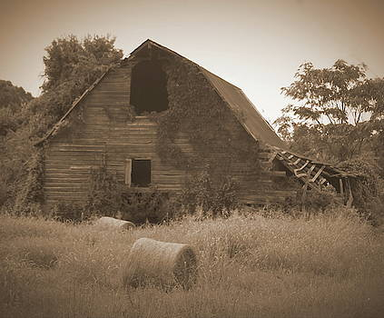 Cathy Lindsey - Sepia Abandoned Barn And Hay Roll