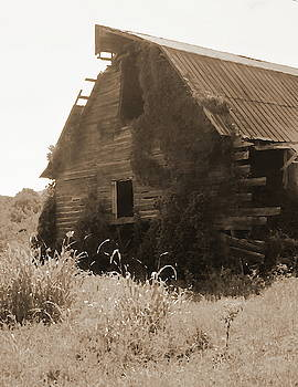 Cathy Lindsey - Sepia Old Barn