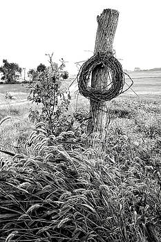 September Barbwire Writhe BW by Rick Grisolano Photography LLC