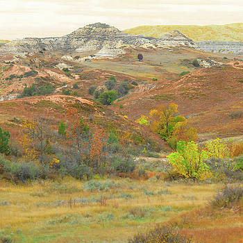 September Glow in West Dakota by Cris Fulton