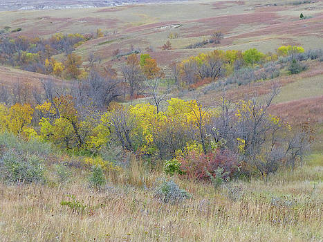 September Perfection on the Western Edge by Cris Fulton