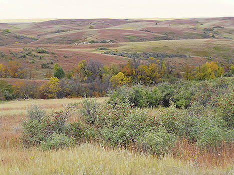 September Prairie Jamboree by Cris Fulton