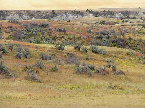 September Reverie in West Dakota by Cris Fulton