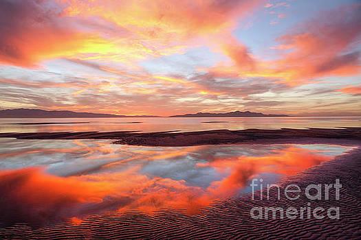 September Sunset by Spencer Baugh