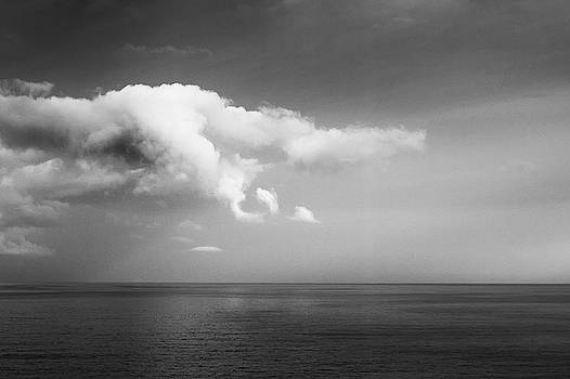 Serene Sea by Stephanie McDowell