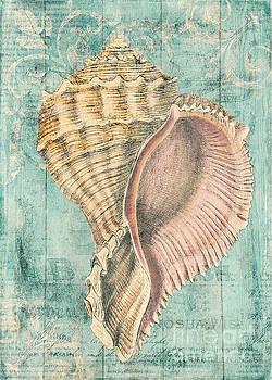 Shabby Shell2 by Kelley Freel-Ebner
