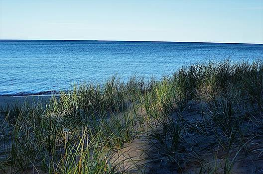 Shade on Lake Superior by Tom Kelly