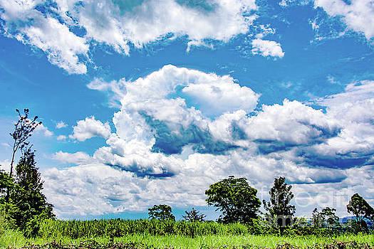 Shades of Blue by Morris Keyonzo