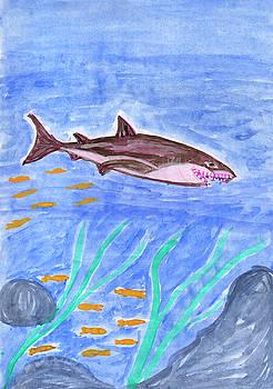 Shark by Dobrotsvet Art