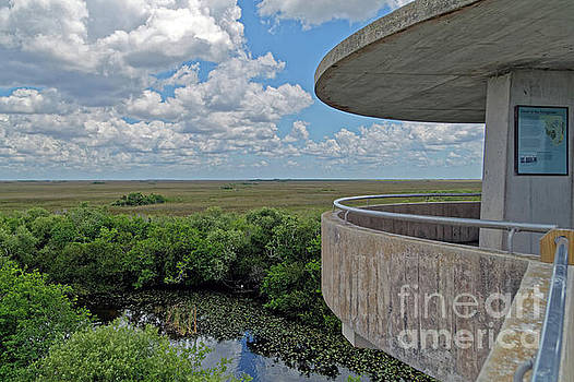Shark Valley Observation Deck View by Natural Focal Point Photography