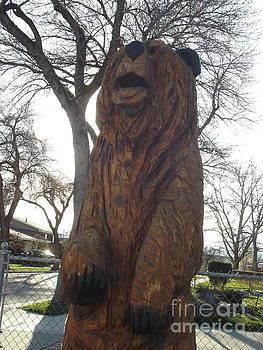 Sharon's Bear  by Michael Cuozzo