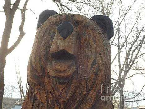 Sharon's Bear Portrait by Michael Cuozzo