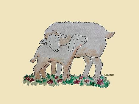 Sheep by Ahonu