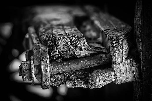 Sheer Decay by Scott Wyatt