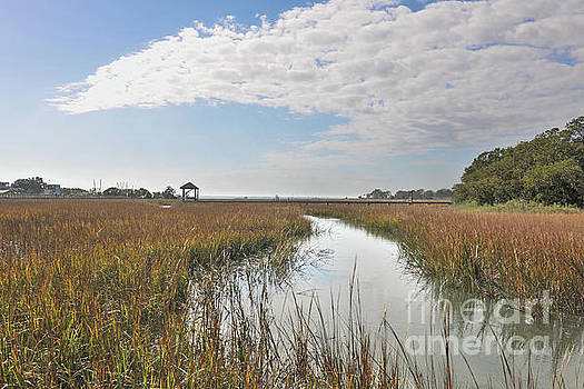 Shem Creek Salt Marsh Sunny Day by Dale Powell