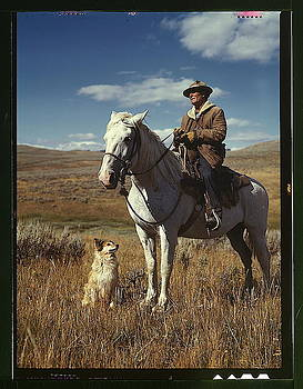 Shepherd with his horse and dog on Gravelly Range by MotionAge Designs