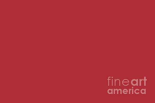 Sherwin Williams Trending Colors of 2019 Positive Red Bold Red SW 6871 Solid Color by Melissa Fague