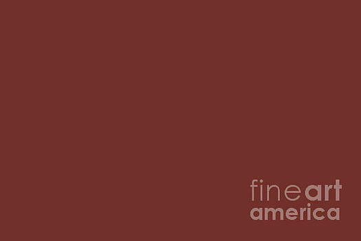 Sherwin Williams Trending Colors of 2019 Rustic Red SW 7593 Solid Color by Melissa Fague