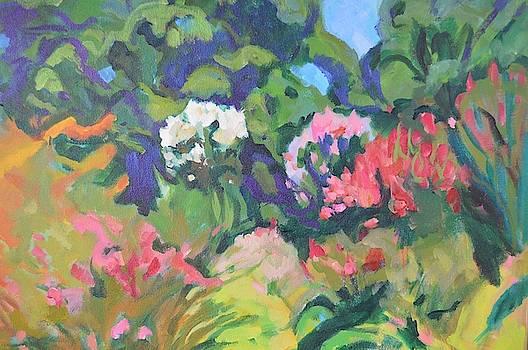 Shimmering Summer  by Aletha Kuschan