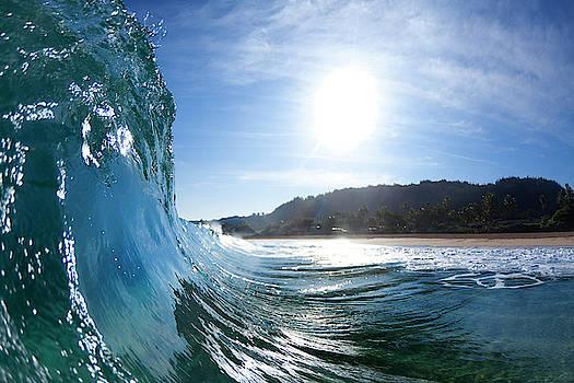 Shiny Take-Off by Sean Davey