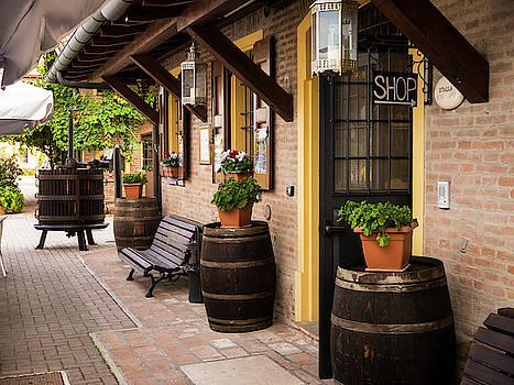 Shop Entrance by Rae Tucker